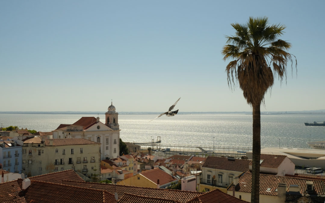 A German in Lisbon: First impressions from the host city